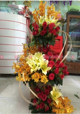 Ngọt ngào - D35748 - xinhtuoi.online