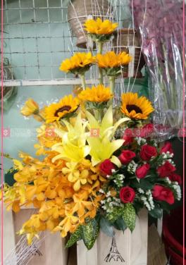 Mùa yêu - D35751 - xinhtuoi.online
