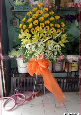 Vinh hoa - D35767 - xinhtuoi.online