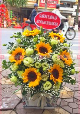 Yêu thương - D71605 - xinhtuoi.online
