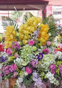 Hạnh phúc - D71606 - xinhtuoi.online