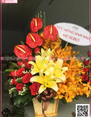 hoa sinh nhật - D27154 - xinhtuoi.online