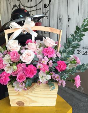 hồng kem, pingpong hồng - D36978 - xinhtuoi.online