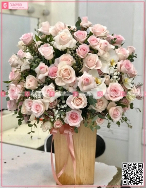 hồng kem, hồng trà, lan hồ điệp - D36980 - xinhtuoi.online