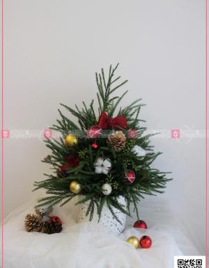 Khác Merry Christmas - xinhtuoi.online