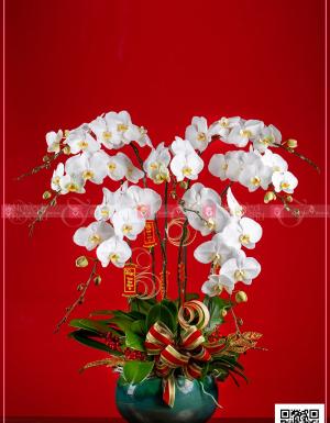 Phúc như Đông Hải - D63977 - xinhtuoi.online
