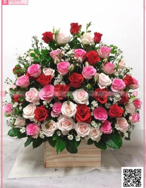 Mùa yêu - D26707 - xinhtuoi.online