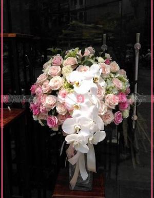 Chung đôi - D28293 - xinhtuoi.online