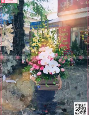 Mùa yêu - D28544 - xinhtuoi.online