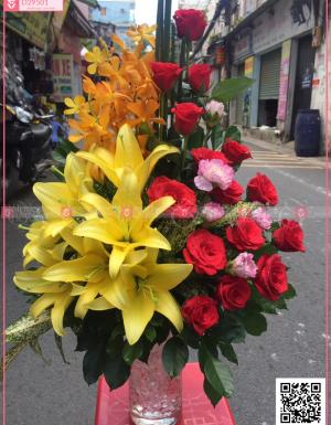 Phú quý - D29501 - xinhtuoi.online