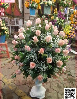 Tràn sức sống - D29544 - xinhtuoi.online