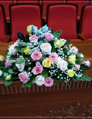 Nhẹ nhành - D29648 - xinhtuoi.online