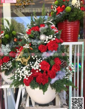 chậu thông noel bằng hoa lá tươi - mẫu 7 - D31114 - xinhtuoi.online