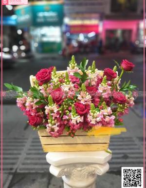 Mõm sói, hoa hồng .. - D31505 - xinhtuoi.online