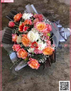 Đông sang - D31633 - xinhtuoi.online