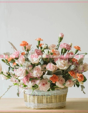 Mùa yêu - D35684 - xinhtuoi.online