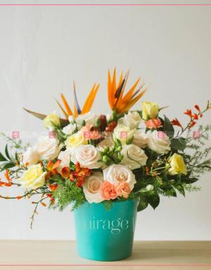 Xinh xắn - D35685 - xinhtuoi.online
