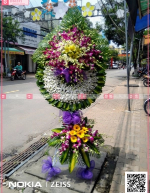 Chia xa - D36231 - xinhtuoi.online