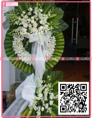 lan trắng, hồng trắng - D36981 - xinhtuoi.online
