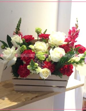 cẩm đơn đỏ, hồng trắng cồ, mõm sói đỏ - D36984 - xinhtuoi.online