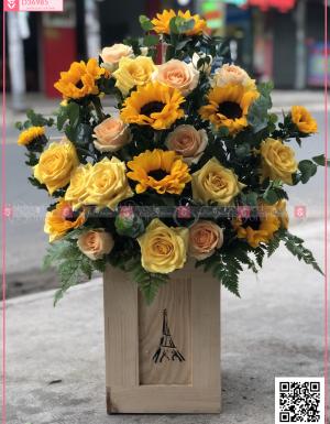 hướng dương, hồng vàng - D36985 - xinhtuoi.online