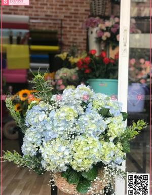 giỏ hoa cẩm tú cầu - D37053 - xinhtuoi.online