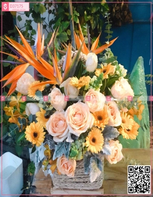 Lẵng hoa chúc mừng - D37175 - xinhtuoi.online
