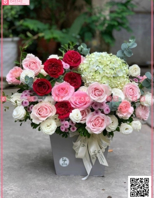 Mùa yêu - D41342 - xinhtuoi.online