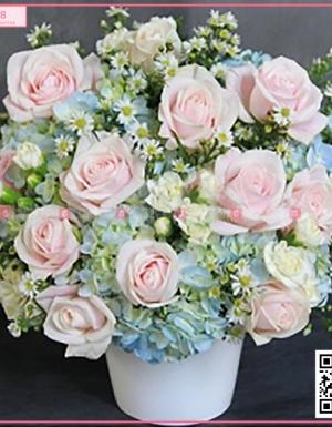 Vườn hoa xinh - D45198 - xinhtuoi.online