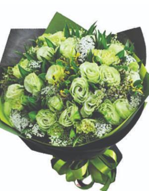 Rêu xanh - D45207 - xinhtuoi.online