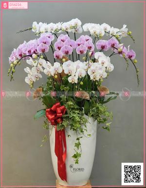 mã sp 1392 - D56216 - xinhtuoi.online