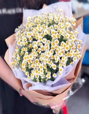 Mùa yêu - D56243 - xinhtuoi.online
