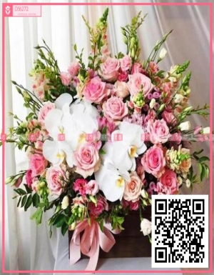 Mùa yêu - D56272 - xinhtuoi.online