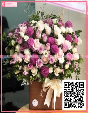 Sớm mai - D56290 - xinhtuoi.online