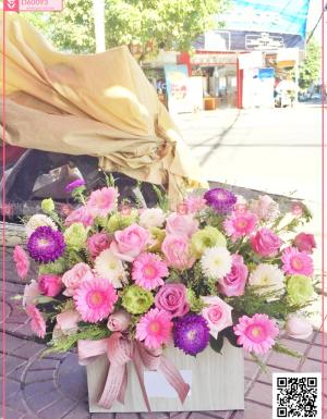 Mùa yêu - D60093 - xinhtuoi.online