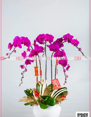 An khang thịnh vượng - D63895 - xinhtuoi.online