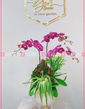 Phát tài - D63912 - xinhtuoi.online