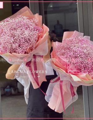babi pink - D90794 - xinhtuoi.online