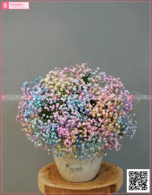 Valentine - D90850 - xinhtuoi.online