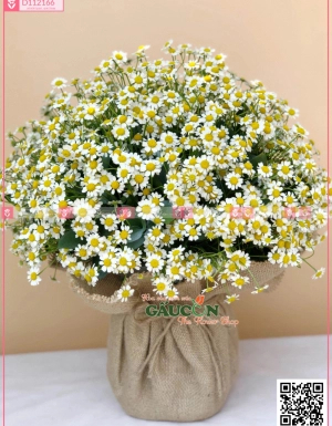Giỏ Hoa Chúc Mừng - D112166 - xinhtuoi.online