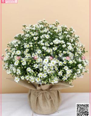 Giỏ Hoa Khai Trương - D112170 - xinhtuoi.online