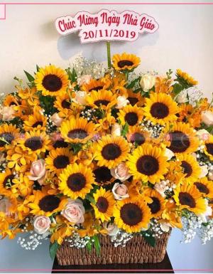 Lẵng Hoa Chúc Mừng - D112204 - xinhtuoi.online
