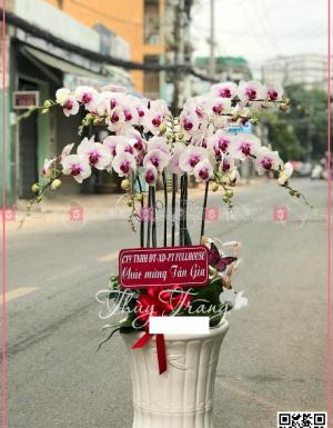 Xuân như ý - D30162 - xinhtuoi.online