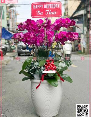 Thịnh vượng - D30164 - xinhtuoi.online