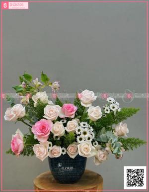 Chậu Hoa Quà Tặng - D124505 - xinhtuoi.online