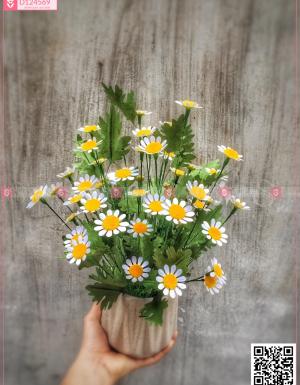 Chậu Hoa Quà Tặng - D124569 - xinhtuoi.online