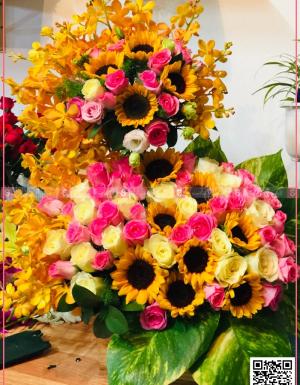 Song Hồng - D124576 - xinhtuoi.online