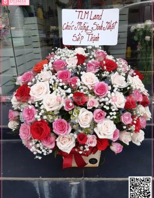Hoa Chúc Mừng - D124614 - xinhtuoi.online