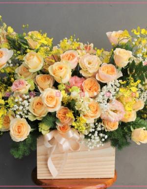 Happy Day - D173527 - xinhtuoi.online