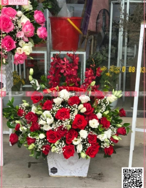 Yêu thương - D173817 - xinhtuoi.online